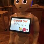 「ロボットで、何が出来る?ペッパーにふれてみよう&ミニアイデアソン」をおこないました。